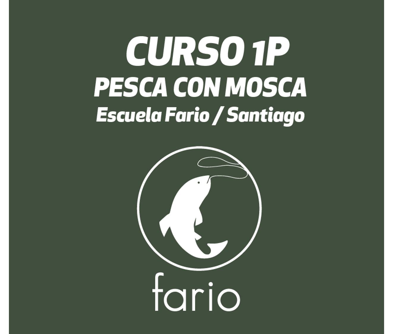 curso_1p.png